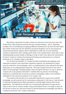 personal statement for job